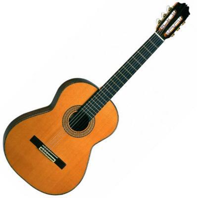 Spanish Classical Guitarist : admira teresa spanish classical guitar ~ Vivirlamusica.com Haus und Dekorationen