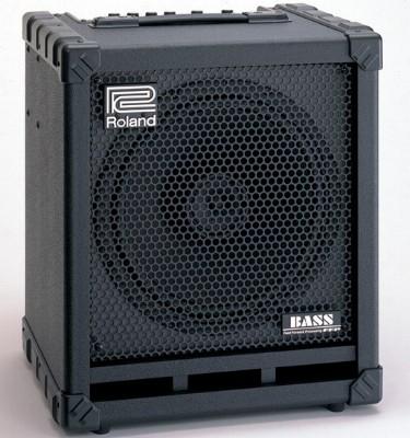 roland cb100 cube 100 bass guitar amp. Black Bedroom Furniture Sets. Home Design Ideas