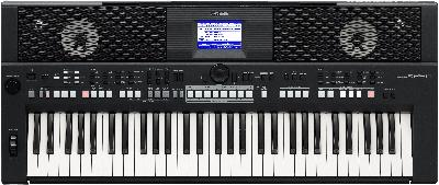 Korg PA500 alternative model is Yamaha PSRS650 Arranger Keyboard